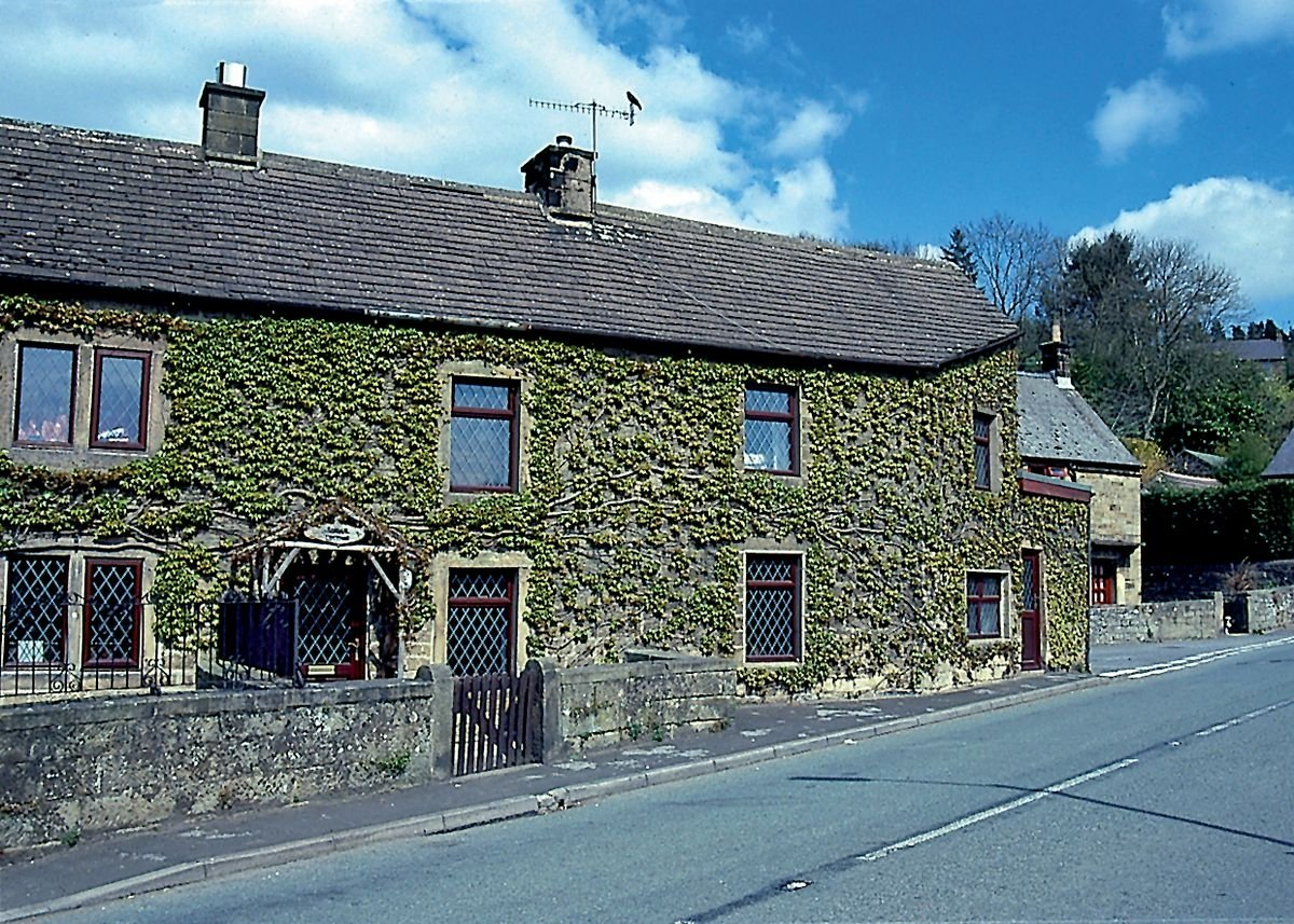 THE COTTAGE AT THE CORNER OF THE STREET
