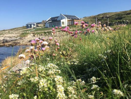 Photo of Cashel Bay Beach Retreat